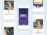 Bark'Tis the Season photo app illustration design app digital dribbble ui ux 44studio