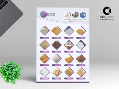 One Page Product Catalog design branding vector illustration