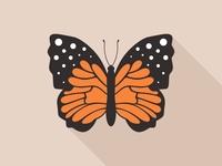 Flat Butterfly