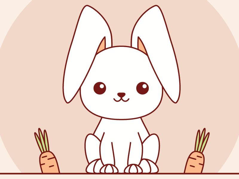 Kawaii Bunny carrots rabbit adobe illustrator bunny