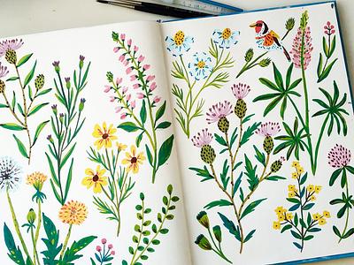 Sketchbook Practice sketchbook floral pattern nature painting flowers art gouache hand drawn drawing illustration