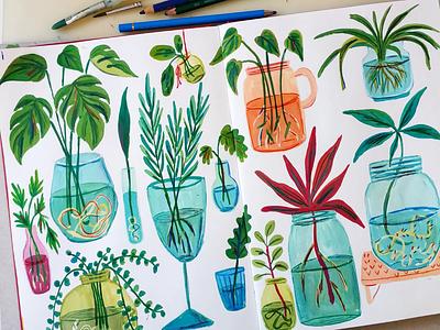 Plant Propagation botanicals sketchbook plants painting art gouache hand drawn drawing illustration
