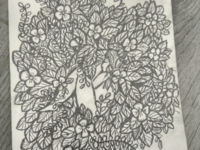 No title - illustration in progress
