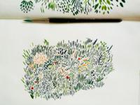 Field illustration in progress