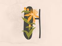 Floral Alphabet - L