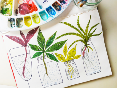 Plants propagation station