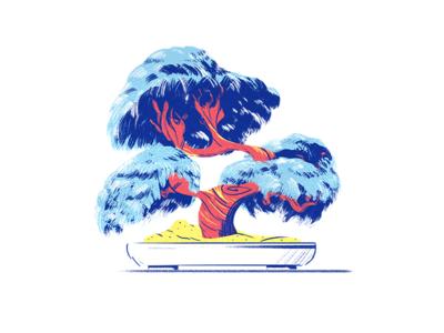 Bonsai Tree brush illustration paint texture color tree bonsai