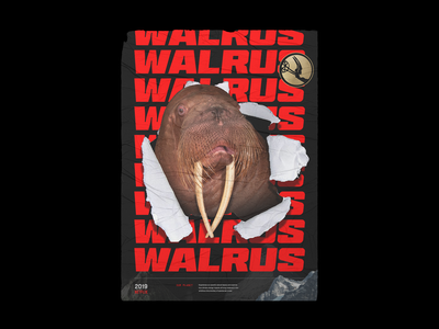 Walrus Poster - Our Planet brutalist poster art netflix planet typogaphy poster walrus