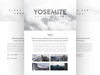 Yosemite National Park Website Concept