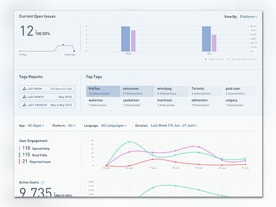 Customer Support Analytics Report website data visulization dashboard analytics analysis report design report reporting
