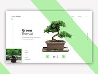 Green Bonsai Landing Page