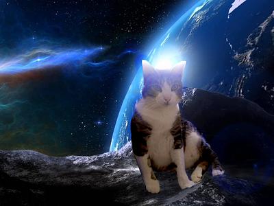 Gordo in the space ! space catlover cat inspiration creativity artist digitalart wacom intuos photoretouch photoshop