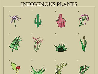 Icon Set: Indigenous Plants nature art nature minimal illustrator illustration icon graphic design design art