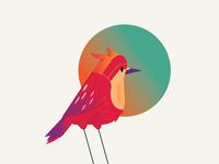 Sweet Lonely bird