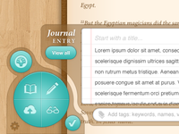 Expanded Journal Entry Panel