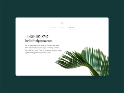Triptana Website