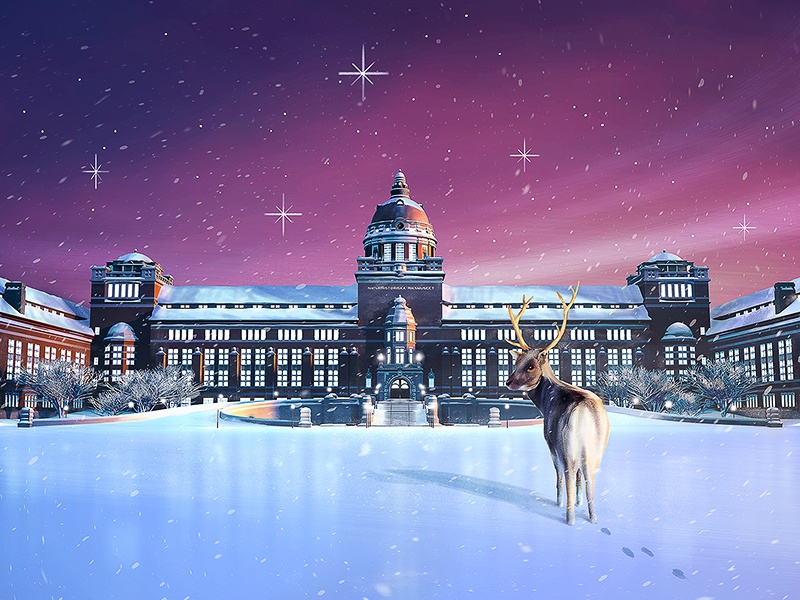 Naturhistoriska Riksmuseet Advent Calendar riksmuseet naturhistoriska museum advent illustration calendar snow christmas