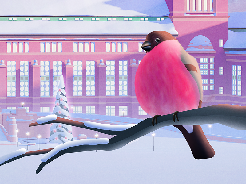Museum of Natural History - Christmas Calendar 2017 - Close up bird calendar advent christmas illustration museum snow