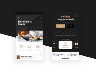 App Concept designconcept sketchapp experience hotel ui ux design interface app