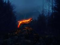 - Fire Wolf -