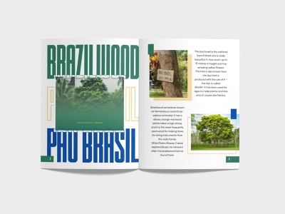 Magazine - Brazil or Brasil? Page 3-4 typo typography magazine design brazil or brasil magazine on brazil brazil brasil magazine illustration branding design branding design book design graphic design