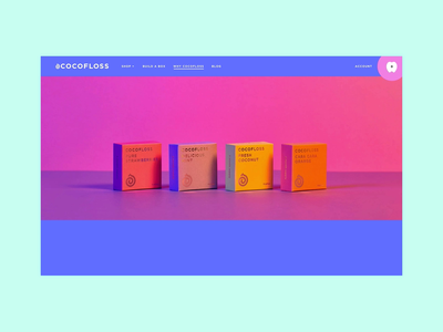 Why Cocofloss Web Page design illustration ux ui interaction animation branding website design
