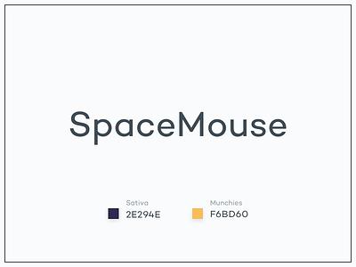 #Typehue Brandom Week 1: SpaceMouse brandom typehue