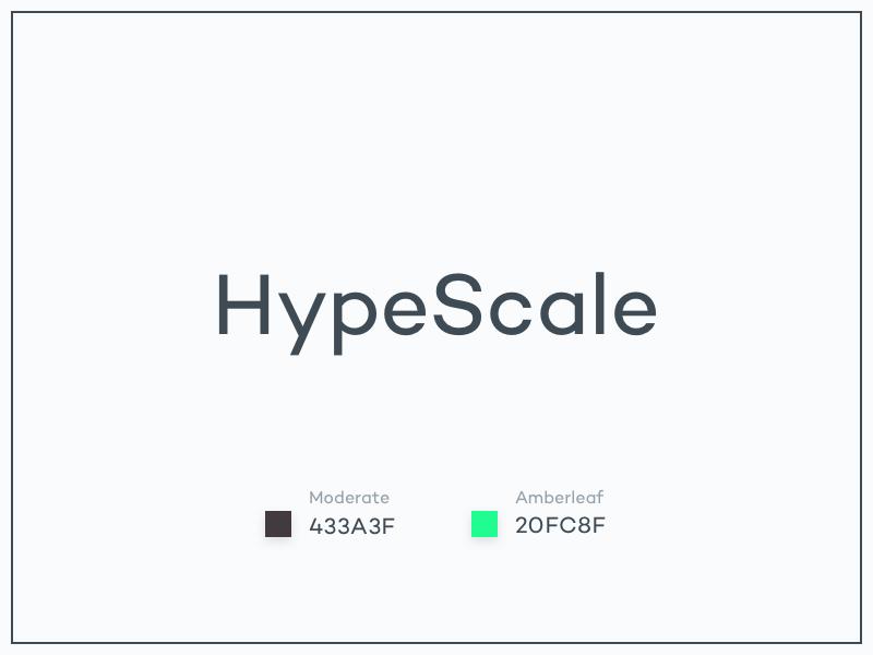 #Typehue Brandom Week 4: HypeScale hypescale brandom typehue