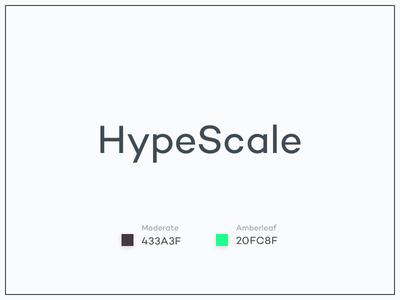 #Typehue Brandom Week 4: HypeScale