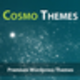 Vasile at CosmoThemes