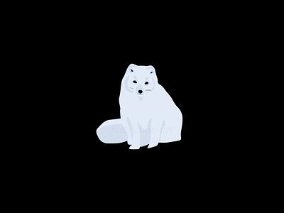 Arctic fox snow arctic fox arctic polar vector redbubbleshop redbubble print illustration fudechanart design