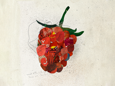 Berry illustrations paper fruit red berry vintage paper art papercut collageart collages collage art graphic graphic design colors collage maker graphicdesign photoshop collage collage digital illustration