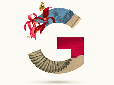 G butterfly letter g g letter 36 days of type 36daysoftype07 collage maker collages collageart collage 36daysoftype typo typography graphic design collage art photoshop illustration graphicdesign collage digital graphic