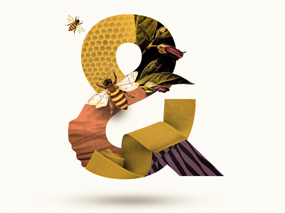 & lettermark letter lettering vintage spring flower honey bee 36 days of type graphic design 36daysoftype07 typography 36daysoftype collage photoshop collage maker collage digital collageart graphic