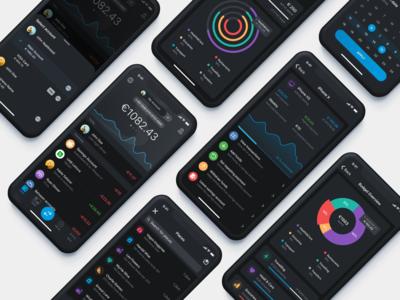 Paysera Mobile Wallet in Dark Mode 🖤