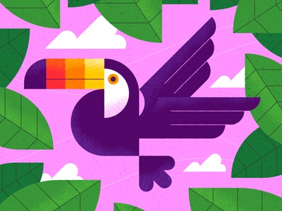 Toucan character illustration graphic animals bird toucan texture wildlife animal vector illustration vector