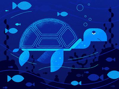 Turtle turtle blue design character vector illustration