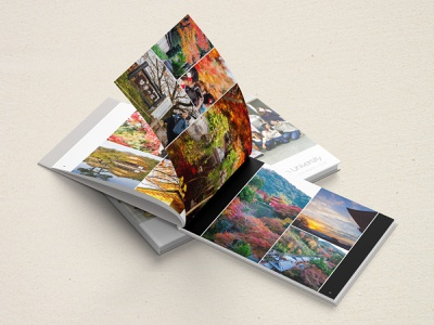 Japan Photo Book photography book