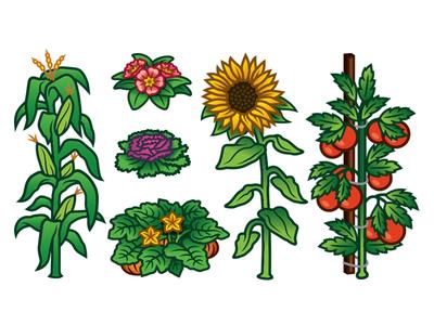 GRID Magazine Plants
