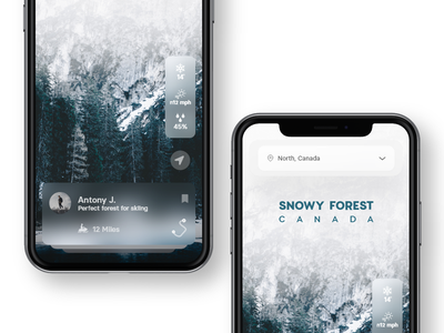 Skiing Mountains weather snow adobe xd mobile glass card app ui ux travel app travel landscape montain skiing skin