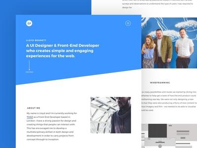 Portfolio Design 2016