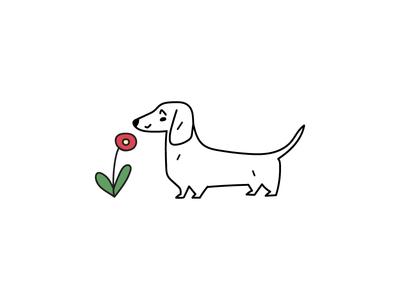 dachshund and flower flower dog animal logotype design illustration flat icon logo symbol mark