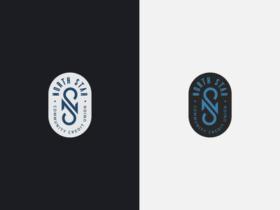 North Star Logo Design vector logo illustration design branding