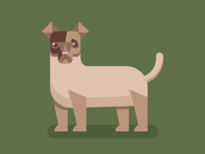 Jack Russell WIP pooch terrier jack russell clean illustration flat vector mutt puppy canine dog