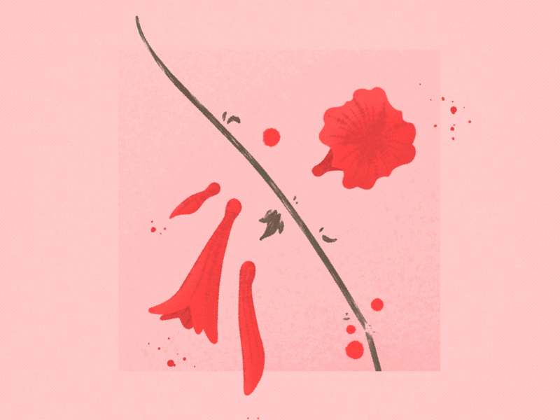 nature ➁  ⎯  expecations nature flower poppy illustration tear abstract botanical plant leaf pedal minimal art superbloom california floral bouquet