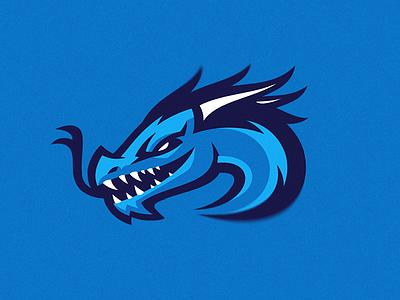 NORDAVINDEN 1 concept redesign sports brand putylo logotype branding mascot identity team sport logo dragon