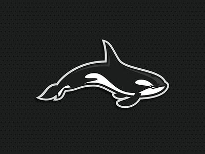 Orca clean orca illustration esport animal putylo logotype branding identity mascot sport logo