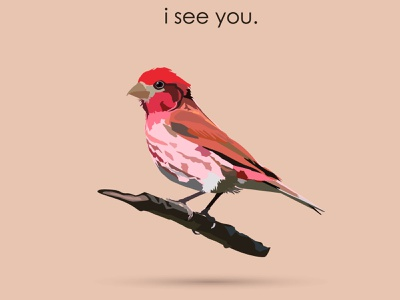 i see you pastel colors design vector illustration