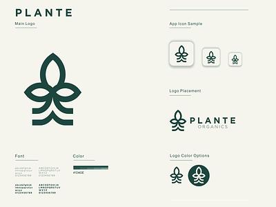 PLANTE illustration graphic design design flat icon branding ux ui app logo leaf plant