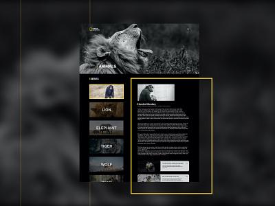 National Geographic Animal Categories Page Ui Concept glassmorphism typography website web ui ux netflix uiux classic animal national geographic minimal design